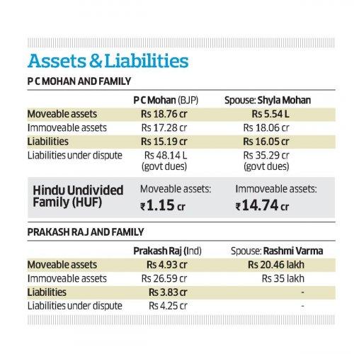 Assets P C Mohan