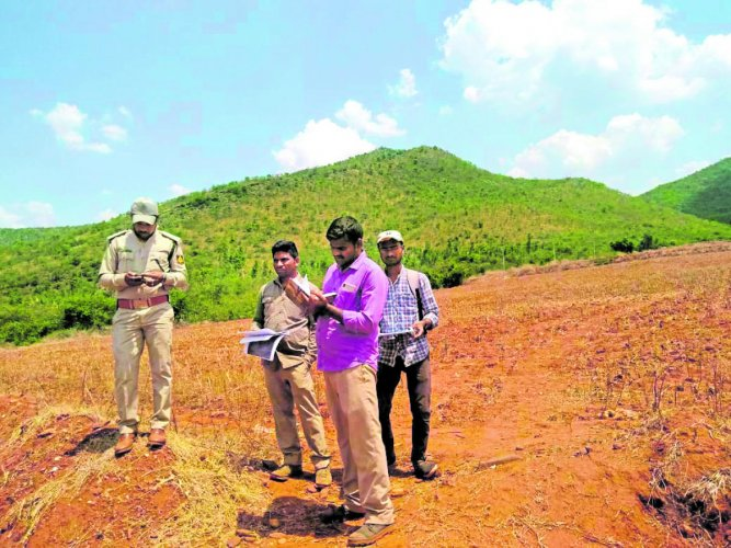 The survey of the deemed forest in progress in Chikkamagaluru.