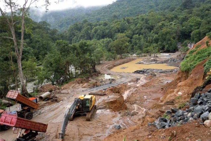 Between 2014 and 2018, the forest loss was 1,22,748 ha with the maximum loss being reported in the year 2016 (30,936 ha) and 2017 (29,563 ha). (DH File Photo)