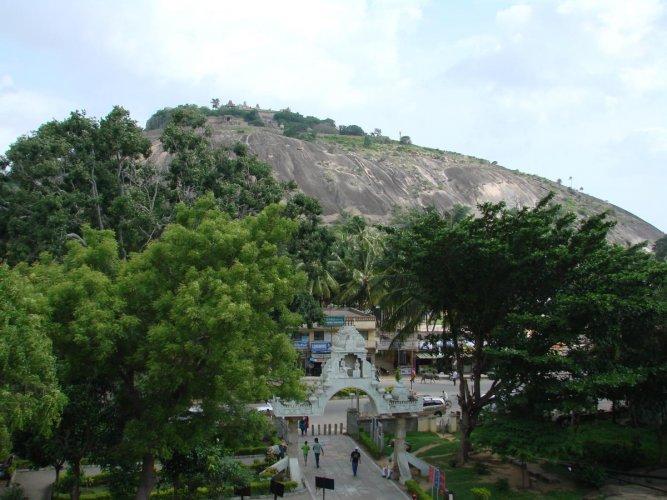 An overview of Chandragiri Hill