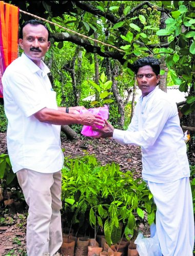 Chandra Nalike Idbadi hands over a sapling to a guest at the house-warming ceremony of his house in Idbadi village, Kedambadi in Puttur taluk.