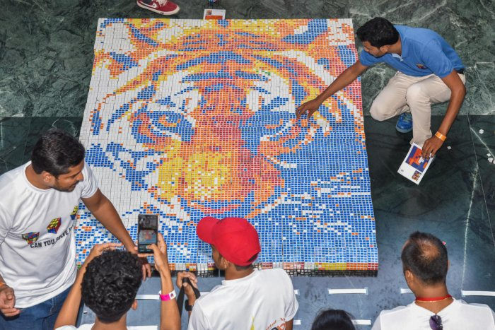 A tiger's portrait created with Rubik's cubes, which made it to the Guinness Book of World Records, in the city on Sunday. DH PHOTO/S K DINESH
