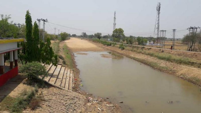 With the temperature soaring to 42 degree Celsius, canals in Sasaram, the major source of irrigation here, have started drying up. (DH Photo)