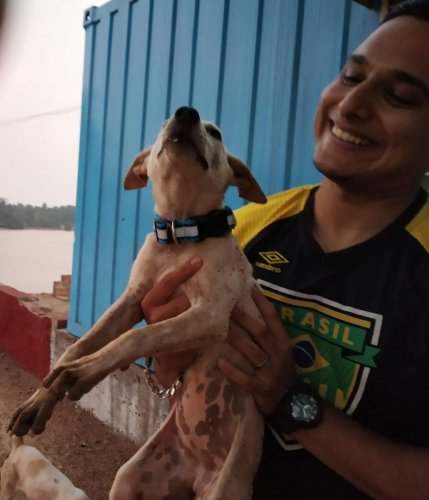 Certified paravet Touseef Ahmed and a stray dog with the reflective collar.
