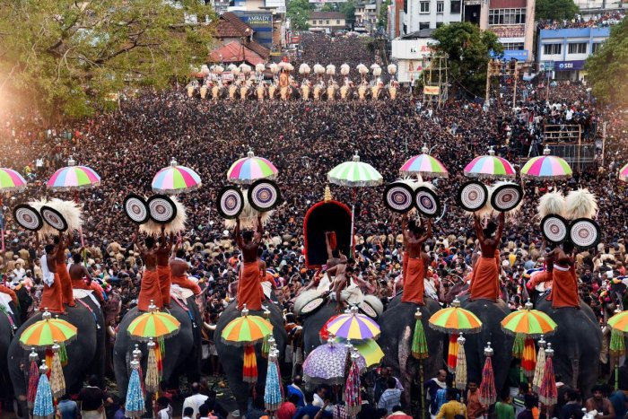 As many as 98 elephants were paraded on the 'Thekkinkadu' hillock ground premises of the Vadakkunnathan Temple at Thrissur town for the Pooram fest, right from the early hours of Monday. Percussion performance by hundreds of performers, including well-known players, reverberated in Thrissur town for hours. Padma award winner percussionist Peruvanam Kuttan Marar even fainted during the performance. PTI file photo