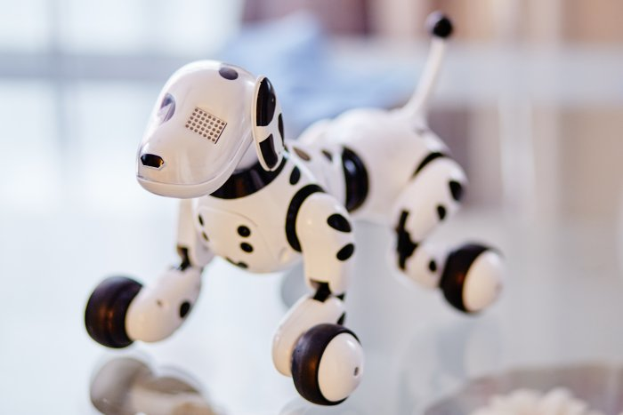 Dubbed Stanford Doggo, the robot can be easily built by anyone by consulting comprehensive plans, code and a supply list that the researchers have made freely available online. File photo for representation