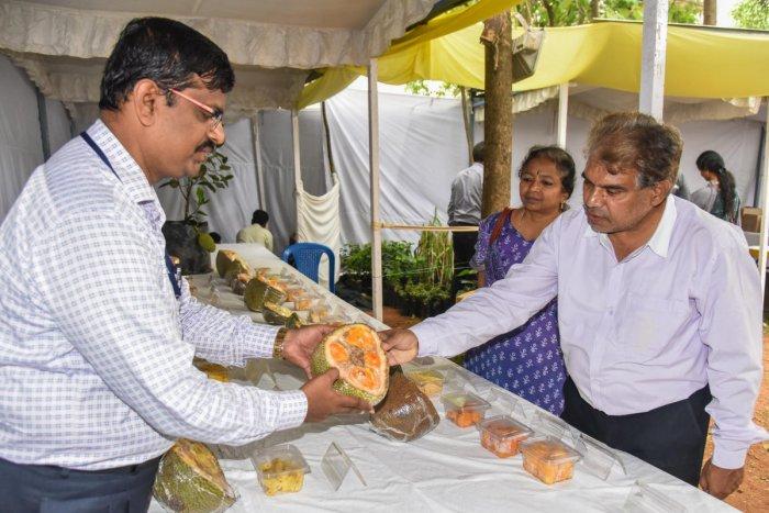 Horticulturalists push for 'elite' fruit varieties | Deccan Herald