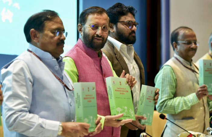 """Speaking at an event to mark World Environment Day, which was on June 5, the minister said the situation """"is not as bad"""" as being portrayed in the media. File Photo"""