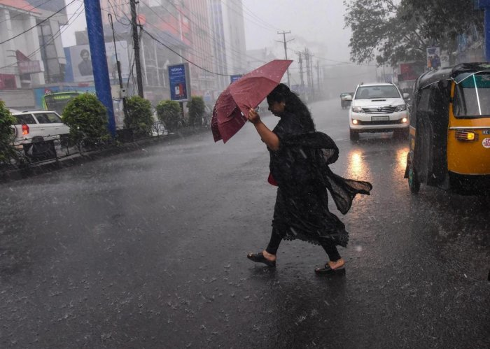 After a delay of a week, monsoon hit the Kerala coast on Saturday, marking the official commencement of the four-month rainfall season in the country. PTI file photo