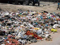 'Plastic disposal policy inappropriate, no good for protecting environment'
