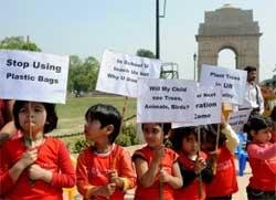 Govt seeking amendments to make anti-plastic bag law stringent
