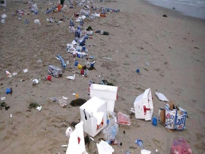 Oceans may have more plastic than fish by 2050: WEF study