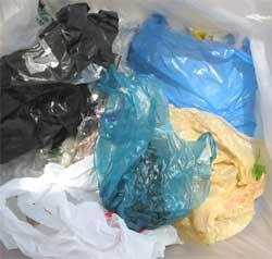 Govt rules out blanket ban on use of plastic bags