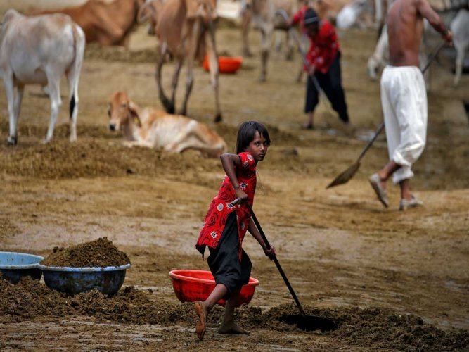 According to the International Labour Organisation (ILO), recent global estimates state that there are approximately 152 million children in child labour and seven out of every 10 working children are in agriculture. Reuters file photo
