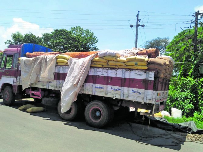 Tree logs being transported covered with the sacks of sawdust in Nalkeri Badaga of Virajpet taluk.