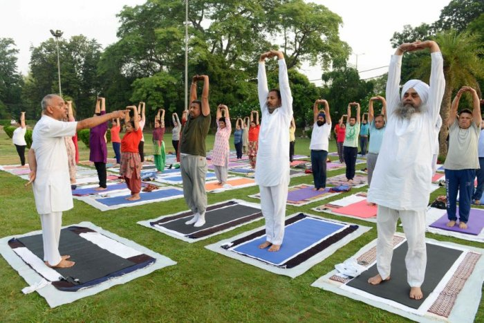 Yoga practitioners in a posture. Picture credit: AFP