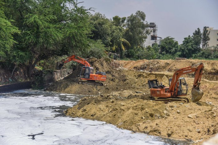Authorities expect to exhume 6.60 million cubic metres of silt from Bellandur Lake. The silt could be used in 15,000 acres of farmland. DH PHOTO