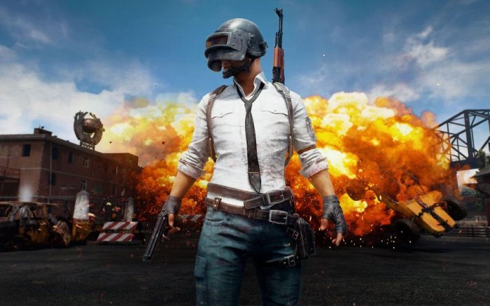 Boy kills brother after getting scolded for PUBG craze | Deccan Herald