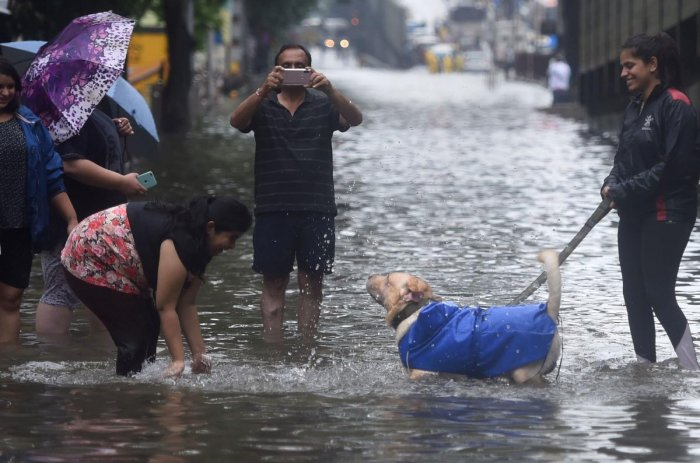 """Heavy rains in Mumbai and adjoining areas on Tuesday flooded its roads and crippled its rail lines, but the famed """"we'll get through this just fine"""" spirit of the metropolis, as always, remained afloat. (PTI Photo)"""