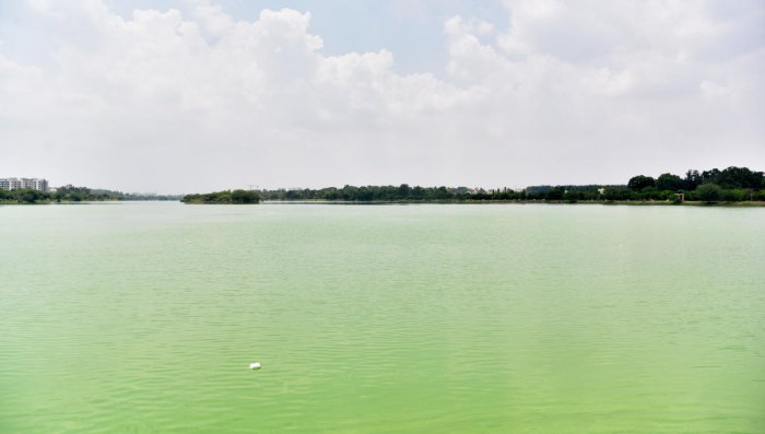 The government decided to divert Rs 37 crore meant for KR Puram lakes to road works.
