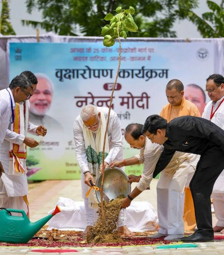 Prime Minister Narendra Modi participates in tree plantation drive, in Varanasi, Saturday, July 6, 2019. BJP Working President JP Nadda and Uttar Pradesh Chief Minister Yogi Adityanath are also seen. (PIB/PTI Photo)
