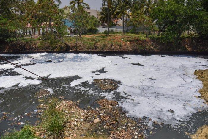 Foam is seen in Bellandur lake (DH File Photo)