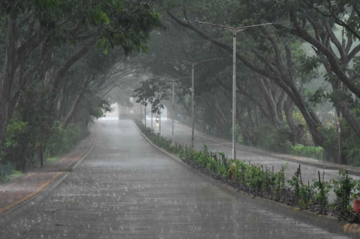 The University of Agricultural Sciences campus in Dharwad as rains lashed the twin cities on Sunday. DH Photos