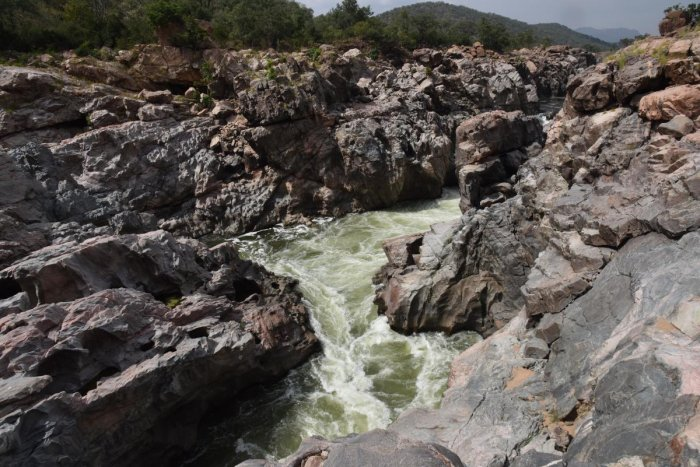 Karnataka has sought permission from central agencies concerned for Environmental Clearance (EC) for Mekedatu Balancing Reservoir and Drinking Water Project across Cauvery river. DH file photo