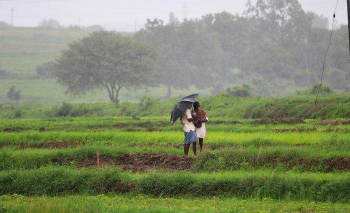 The Budget would also help in doubling the income of farmers. (File Photo)
