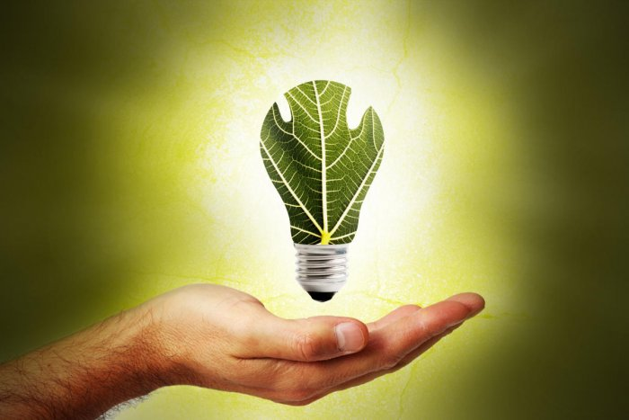 West Bengal failed to create a Green Energy Fund (GEF) under the renewable energy policy of the government. (DH Photo)