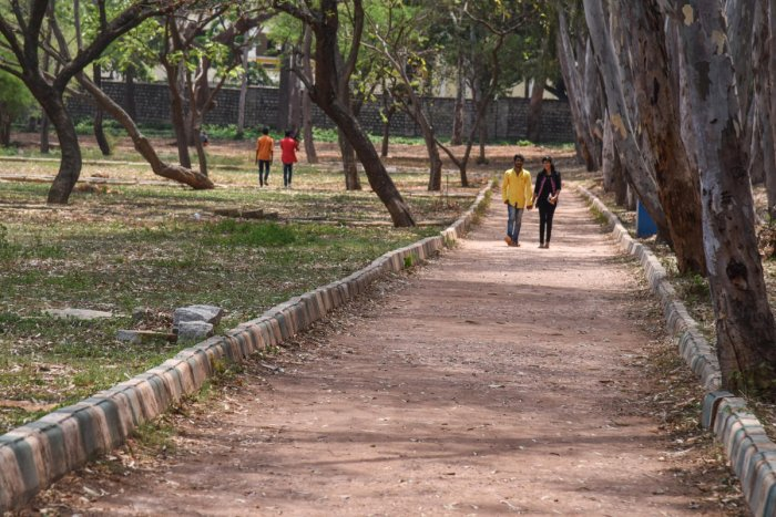 The track along the Lalbagh Lake next to the RV Teachers' College corner has been levelled, making it suitable for jogging. DH PHOTO/S K DINESH