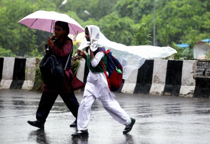 Five districts have received excess rainfall while 10 recorded a deficit and two scanty rains, according to the water resources department here. (PTI File Photo)