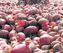 India imports onion from Pakistan