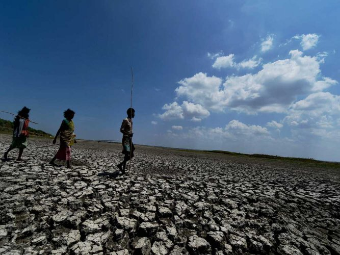 According to figures available with the revenue department, since the beginning of the June till July 21, the overall rainfall deficit was about 29% in the state compared to only 8% during the same period last year. (PTI File Photo)