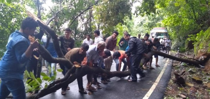 Bus crew and passengers clear a fallen tree on Agumbe Ghat Road.