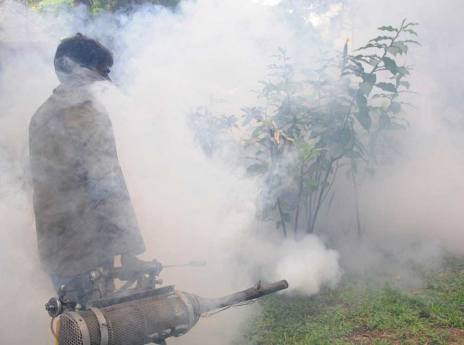 Of the 5,319 cases of dengue across Karnataka, Bengaluru has topped the chart with 3,393 cases till July. (DH File Photo)