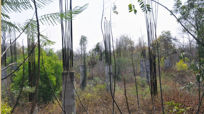 Incomplete structure of the Regional Science Centre, near Kukkarahalli Lake, on University of Mysore campus, in Mysuru.