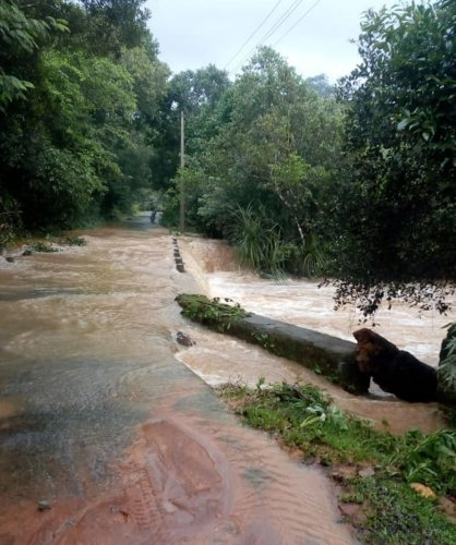 A view of the stream overflowing on to Kikre bridge in Sringeri.