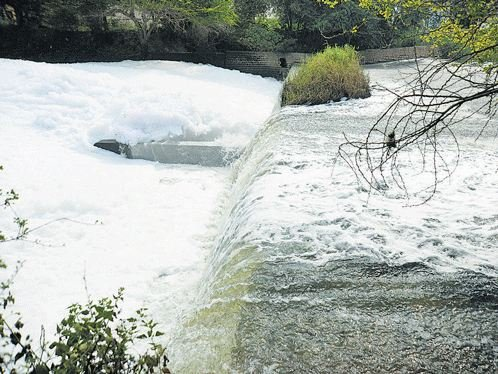 Residents of Raja Rajeshwari Nagar and other nearby areas are gearing up to save the Vrushabhavathi River, a tributary of Arkavathi.  (DH Photo)