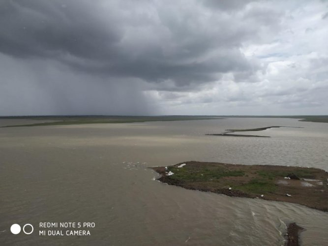 Water inflows into Manjira River near Singur Dam in Telangana