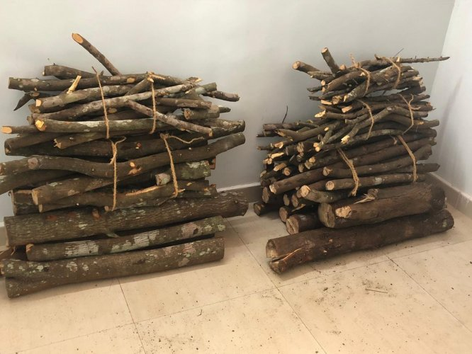 Two men were arrested for allegedly smuggling sandalwood in northeast Delhi's Welcome area, police said on Thursday.