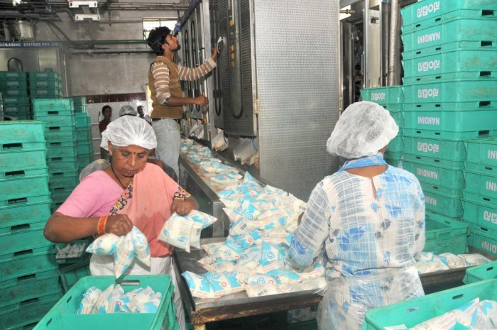Employees at the milk processing unit in Mysuru. Dh-file photo