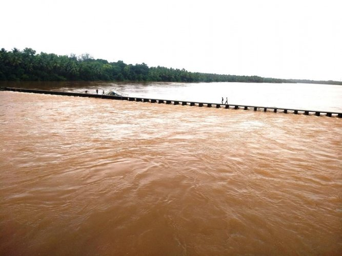 A vented dam built across River Sauparnika is brimming with water at Bantwadi in Kundapura.