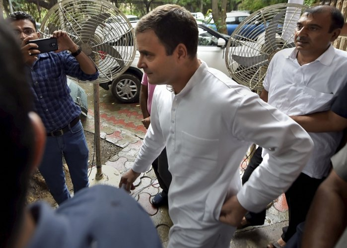 Despite Congress' outgoing president Rahul Gandhi ruing that the internal sabotage was also one of the reasons for the collapse of the government. (PTI Photo)