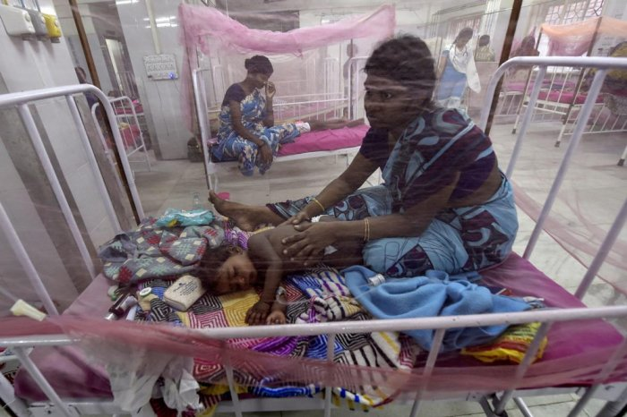 At least nine persons have died and 3000 have been diagnosed with dengue in West Bengal in the last one month. File photo for representation