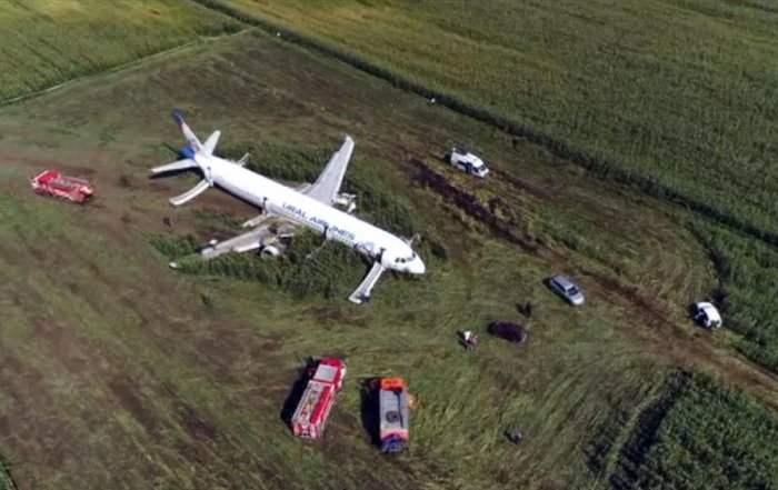 In this video grab provided by the RU-RTR Russian television, a Russian Ural Airlines' A321 plane is seen after an emergency landing in a cornfield near Ramenskoye, outside Moscow, Russia (AP/PTI Photo)