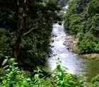 Karnataka seeks Centre's help to study climate change in W Ghats