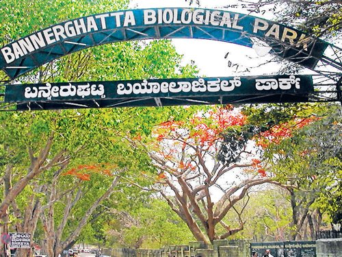 Research centre at Bannerghatta to study climate change impact