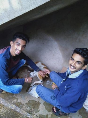 BARC team rescuing animals. Photo by author