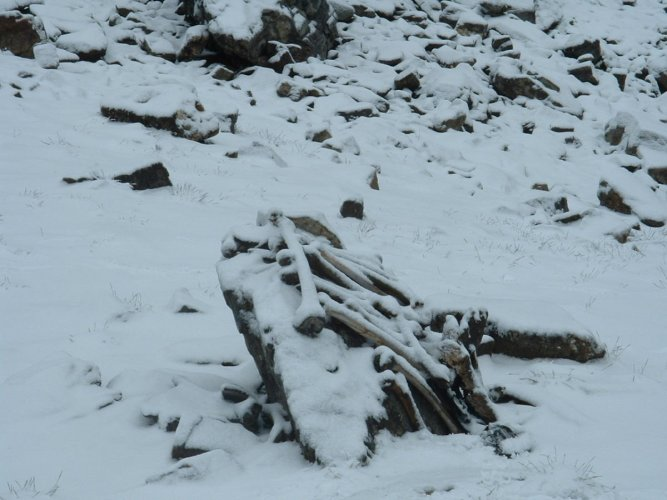 The Roopkund lake at an altitude of 16,500 ft in Chamoli district of Uttarakhand has hundreds of ancient human skeletons around its shores.